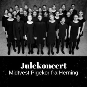 Julekoncert • Linnerup Kirke • 12. dec. • 19.00